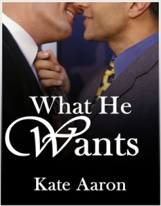 Book Review: What He Wants by Kate Aaron