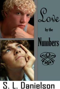 Book Review: Love by the Numbers by S.L. Danielson