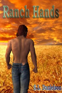 Book Review: Ranch Hands by S. L. Danielson